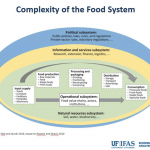 A graphic depicting the complexity of the food system, by the UF IFAS Economic Impact Analysis Program presented during the July 2021 FSC-GNV meeting