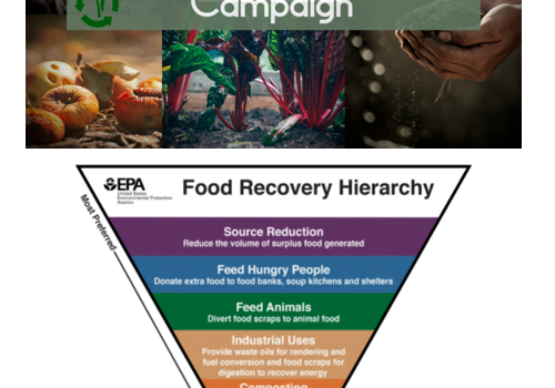 City Asks What Food Waste Recovery Groups Need to be Successful